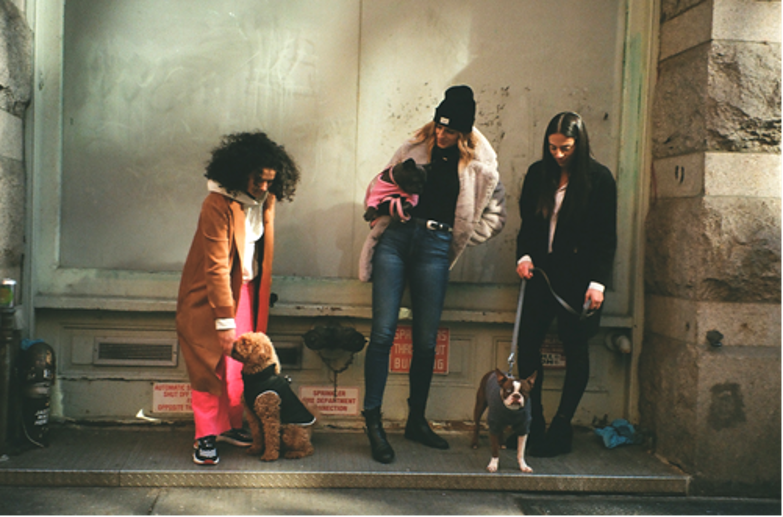 Dog walkers from Soho Paws